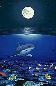 WYLAND - Shark Reef - Lithograph - 18 x 24 inches