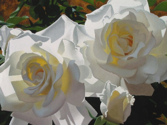 BRIAN DAVIS - White Radiant Roses - Giclee on Canvas - 30 x 40 inches