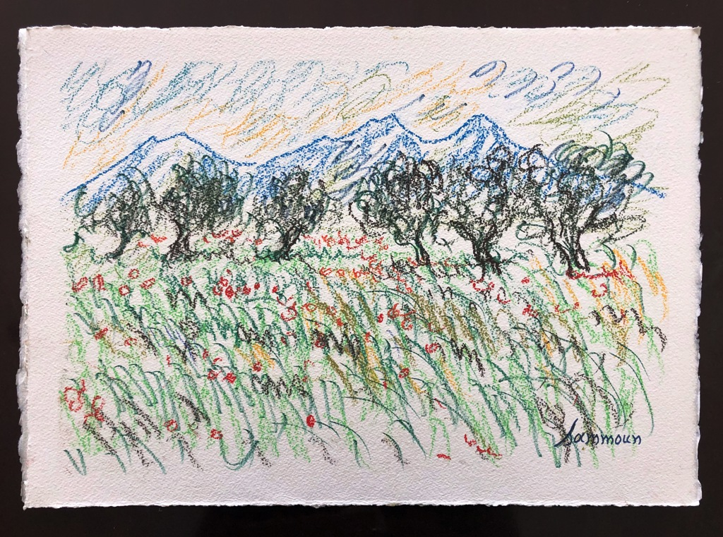 SAMIR SAMMOUN - Poppy Field, Provence - Watercolor Pastel on Paper - 13x9.5 inches