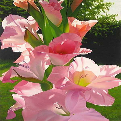BRIAN DAVIS - Katie's Gladiolas - Giclee on Canvas - 18 x 36 inches