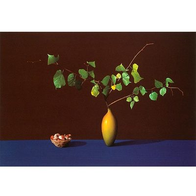 ROBERTO AZANK - Still Life w/ Branch & Nuts - Giclee on Paper - 20x32 inches