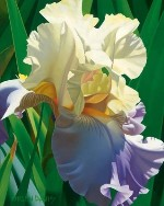 BRIAN DAVIS - Kauai's Tropical Beauty - Giclee on Canvas - 20x16  inches