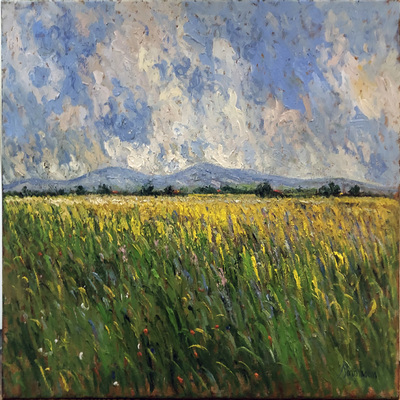 SAMIR SAMMOUN - Growing Wheat - Oil on Canvas - 30 x 36 inches