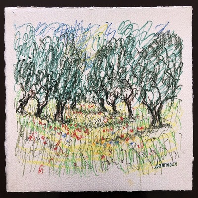 SAMIR SAMMOUN - Olive Grove and Poppies - Watercolor Pastel on Paper - 19x13 inches