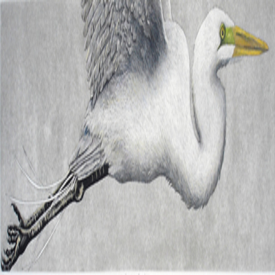 NANCY CHARLES - Soaring Egret - Hand Colored Etching - 7x24 inches